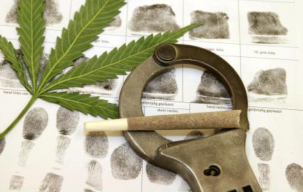 Maine Drug Crimes